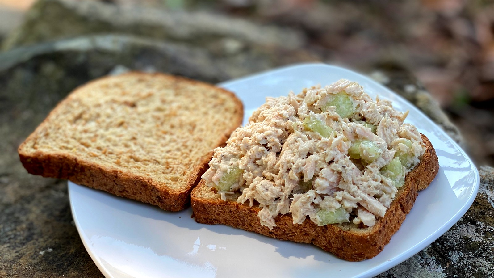 Image of Elite Tuna Salad